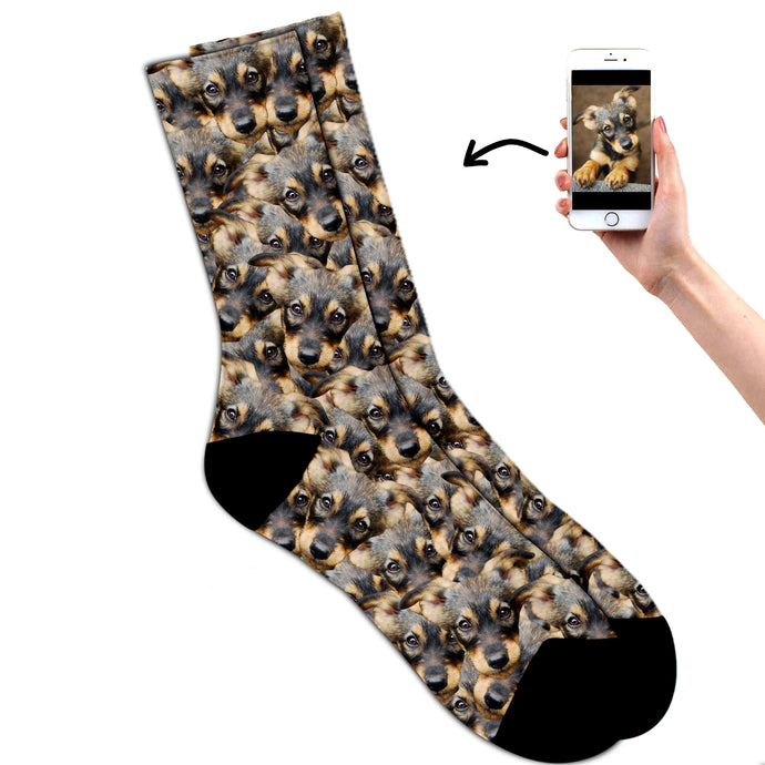Multi Pet Socks