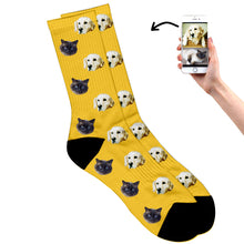 Animal Socks