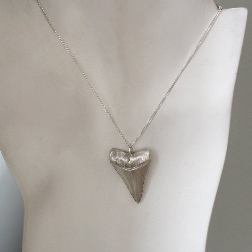 Full view of sterling silver great white shark tooth necklace and chain from Metalicious