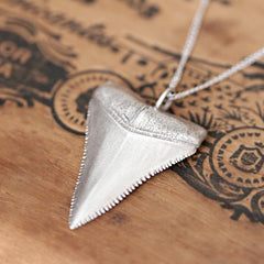 Close-up view of great white shark tooth sterling silver necklace from Metalicious