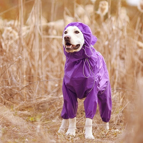 Image of Waterproof Clothes High Neck Hooded Jumpsuit For Small Big Dogs Raincoat