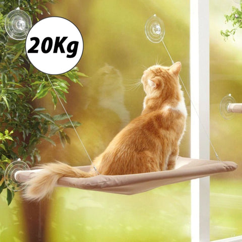 Image of Cute Pet Hanging Beds Bearing 20kg Cat Sunny Seat Window Mount Pet Cat Hammock