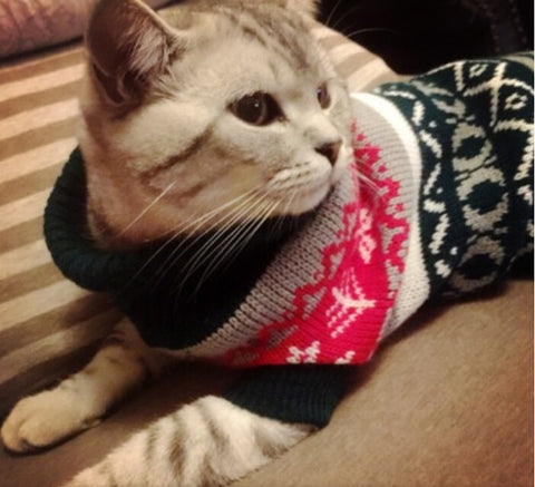 Image of Snowflower Cat Sweater Knitwear Pet Jumper Coat
