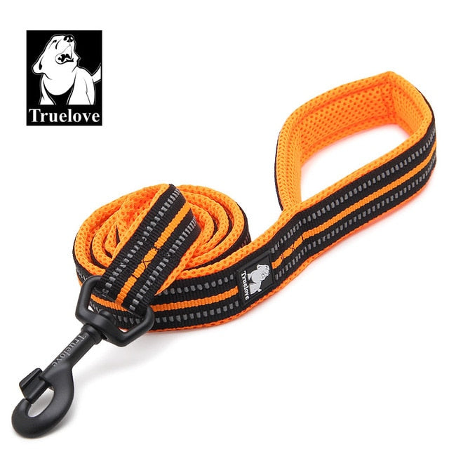 Soft Dog Pet Leash in Harness and Collar Reflective Nylon Mesh Walking Training