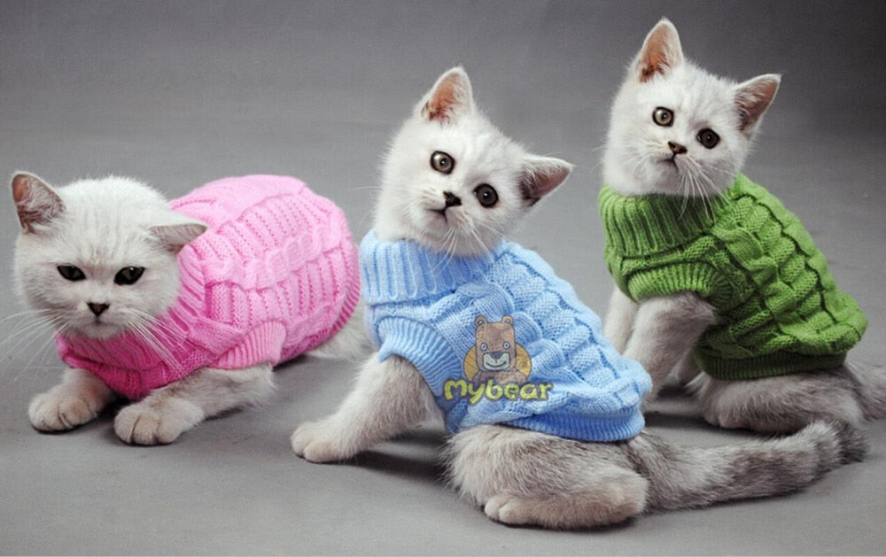 Cat Sweater Sphinx Cat Coat Spagetti Warm Autumn Winter