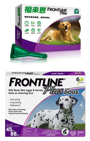 Image of Dogs & Cats Flea and Tick Treatment