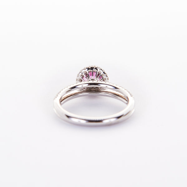 The Sandra - 18K White Gold and Pink Sapphire