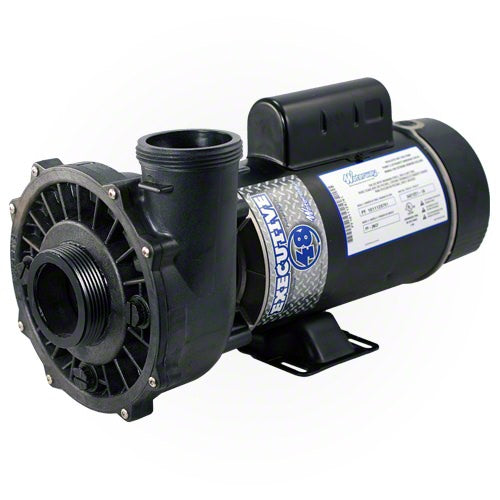 Waterway Executive 2 HP 2 Speed 48 Frame 230 Volt Pump 3420820-1A