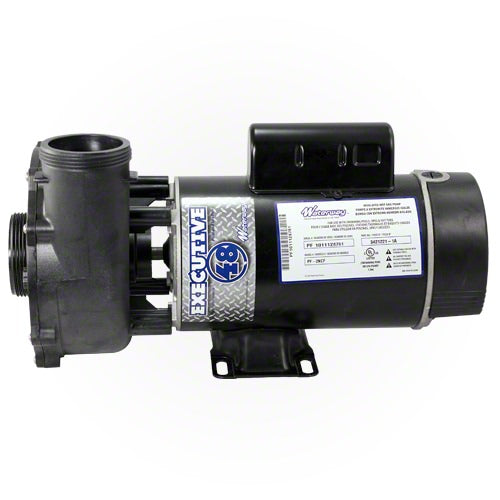 Waterway Executive 3 HP 2 Speed 48 Frame 230 Volt Pump 3421221-1A