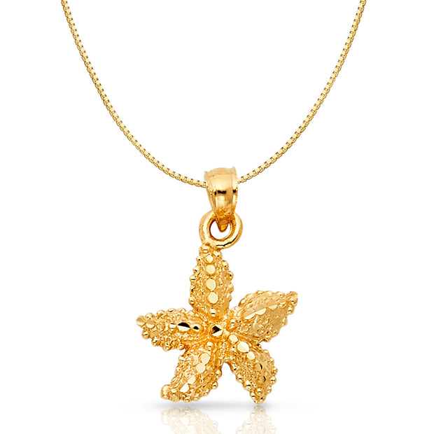 14K Gold Starfish Charm Pendant with 0.8mm Box Chain Necklace