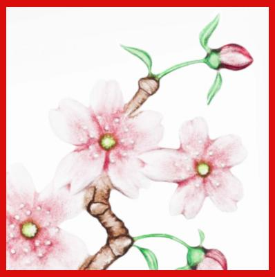 Gifts Actually - Mats Jonasson Crystal - Floral Fantasy - Cherry Blossom (34102). Close-up