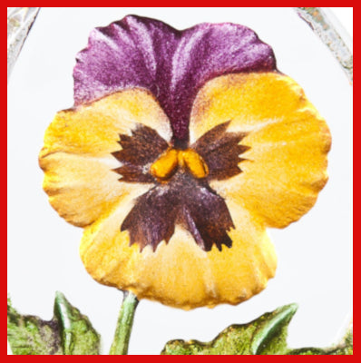 Gifts Actually- Mats Jonasson Crystal - Floral Fantasy - Pansy (Yellow) (34217) (Close-up)