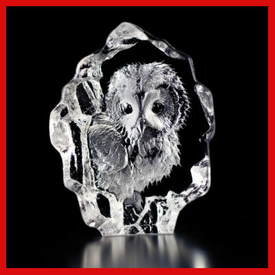 Gifts Actually - Mats Jonasson Crystal - Owlet (88116)