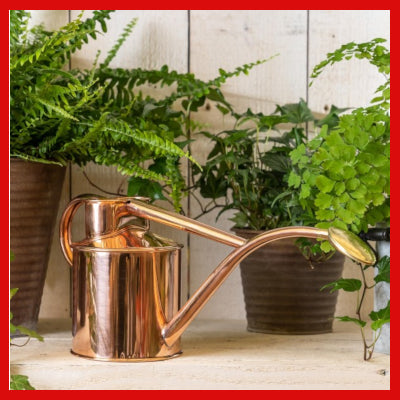 Gifts Actually - Haws Watering Can - 1 ltr - Copper