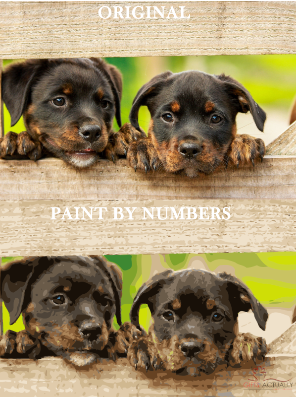 Gifts Actually - Custom / Photo Paint by numbers -  Dog