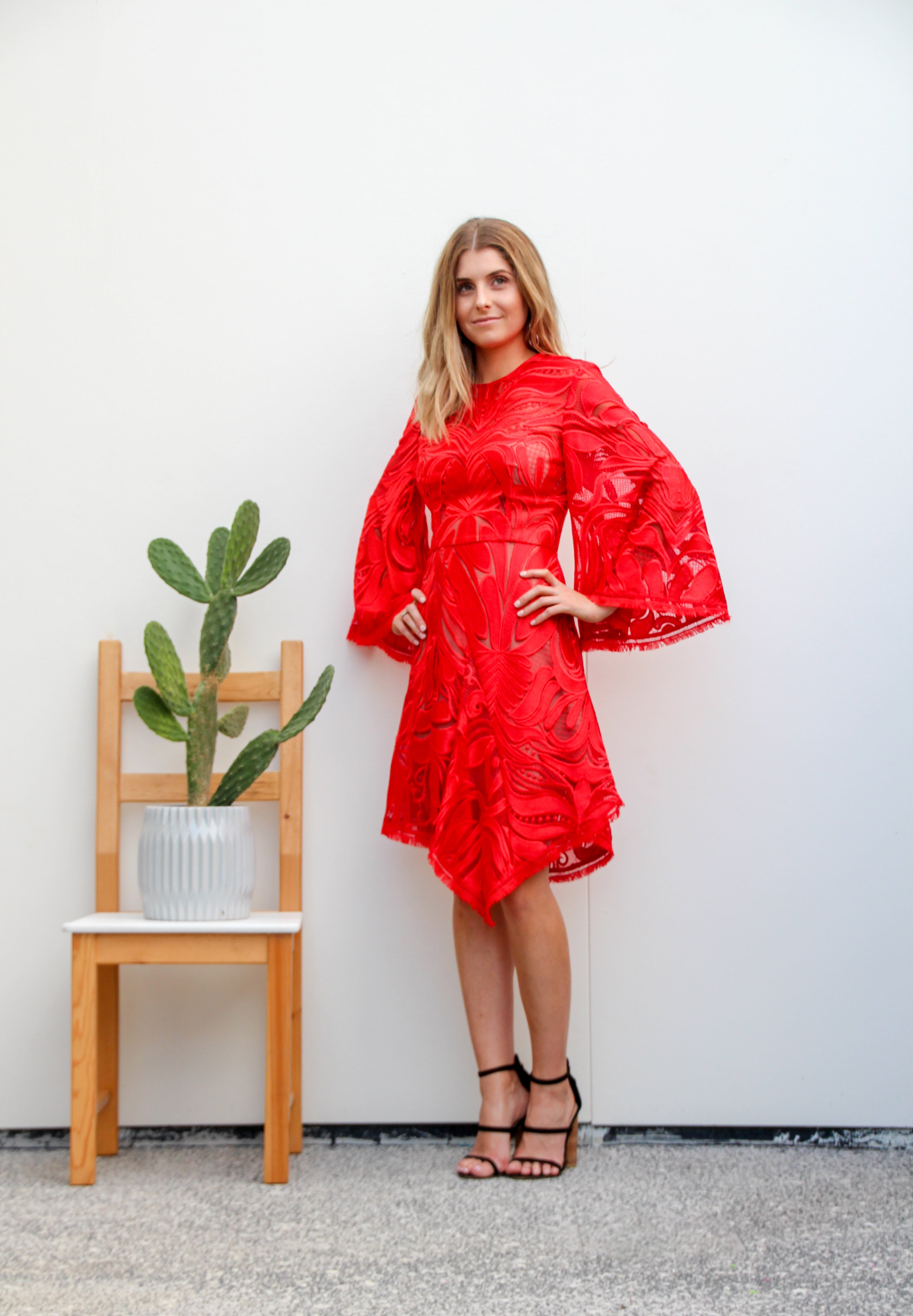 Carnation Flared Sleeve Dress