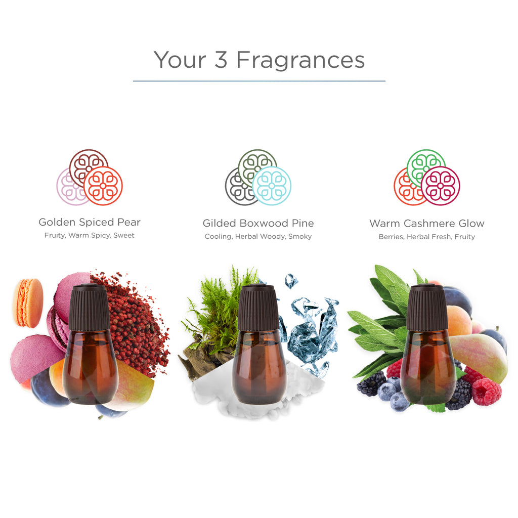 Luminous Holiday Collection - Diffuser Refills