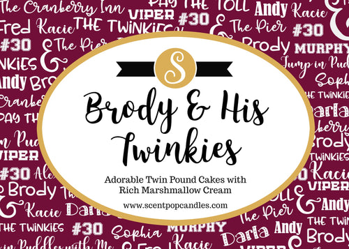 Brody & His Twinkies, Cranberry Inn Series, Beth Ehemann Inspired Soy Candle