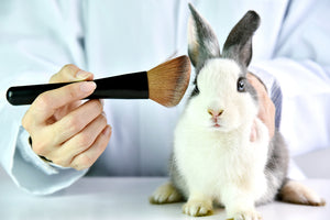 Animal Ingredients To Look Out For In Beauty Products