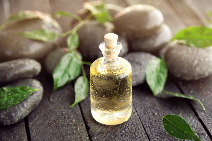 5 Health Benefits of Tea Tree Essential Oil