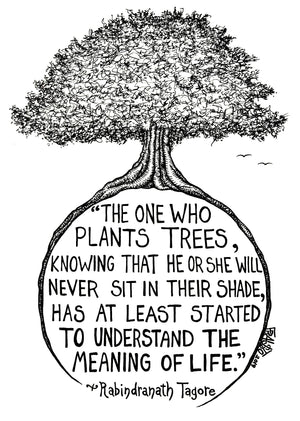 Rabindranath Tagore Quote Inspirational Artwork Original Tree Drawing By Rick Frausto