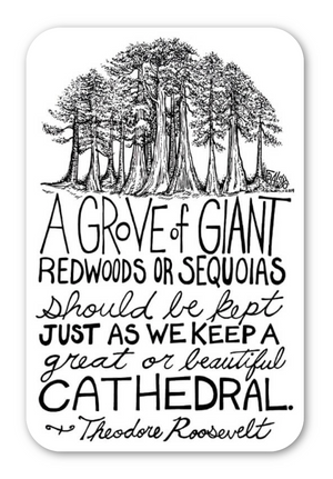 Inspirational Redwood Trees Theodore Roosevelt Quote Eco Friendly Sticker By Rick Frausto