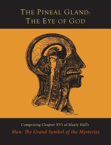 The Pineal Gland: The Eye of God - Holistically Heights