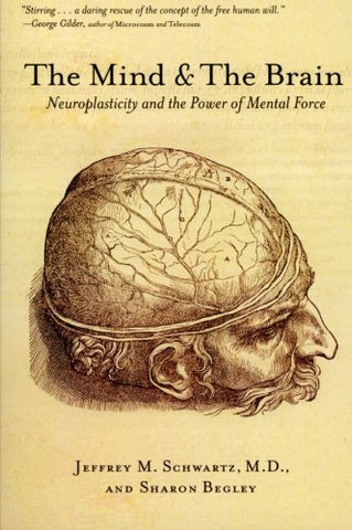 The Mind and the Brain: Neuroplasticity and the Power of Mental Force - Holistically Heights