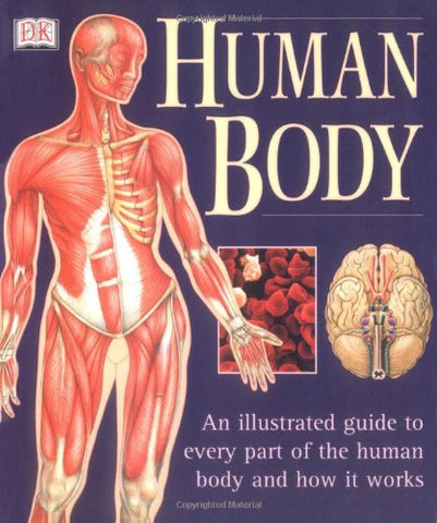 Human Body: An Illustrated Guide to Every Part of the Human Body and How It Works - Holistically Heights