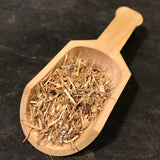 Dog Grass Root - Triticum repens