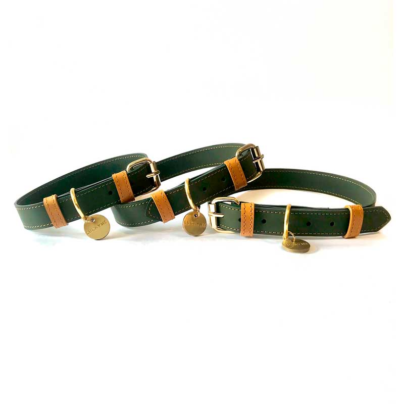 Collar Green Coconut