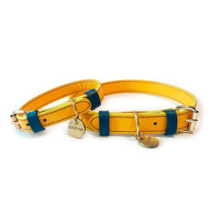 Collar Yellow Blueberry