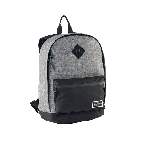 Campus 22L backpack