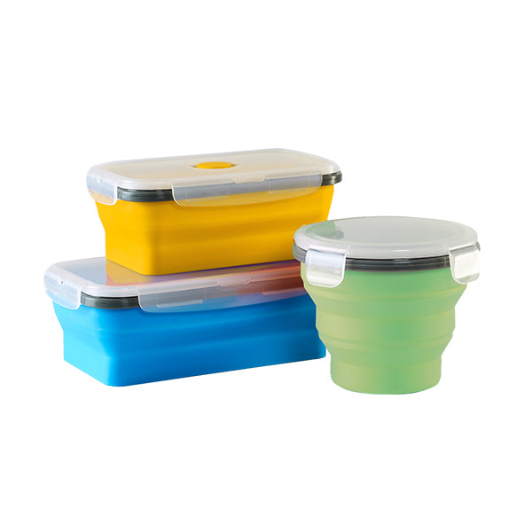 Collapsible Container (M)