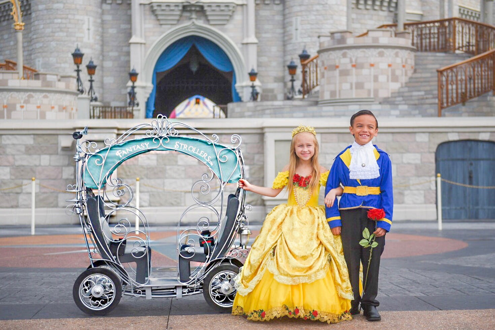 Carriage Stroller - Mickey's Halloween / Christmas Party Rental