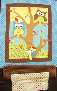 Bright Owl Embroidered Flannel Baby Panel & Coordinating Flannel Dot & Minky Dot Backing Fabric