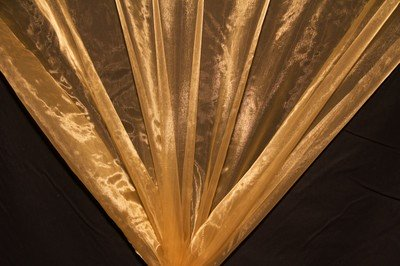 Antique Gold Organza Fabric