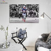 One piece Patriots Sony Michel canvas wall art