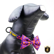 """What happens in Vegas""  Collar & Bow Tie"