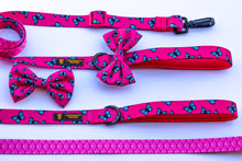 "🔥NEW ARRIVAL🔥 ""FABULOUS DARLING"" 💕🎀Adjustable leash"