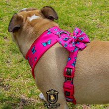"✨FABULOUS DARLING"" 💕🎀Adjustable leash"