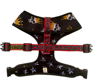 "🔥NEW ARRIVAL🔥 ""Rockstar "" 😎⭐️🤩⛓💀 Luxury Reversible Harness"