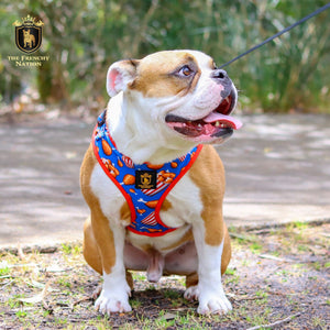 """Finger Licking Good""  Adjustable Harness ✨Bulldog collection ✨"