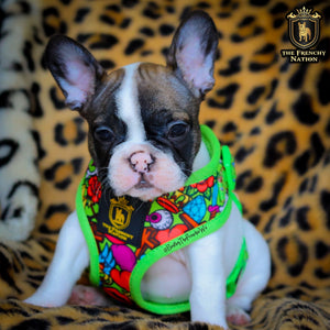 "🔥NEW ARRIVAL 🔥 ""HEARTBREAKER""😎👑💋💎🔥Puppy Adjustable Harness"