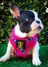 "🔥NEW ARRIVAL 🔥 ""FABULOUS DARLING"" 🎀💕Puppy Adjustable Harness"