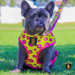 """Donut Life"" Reversible Harness"