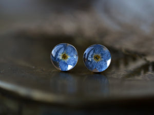 Forget me not earrings with real flowers and resin