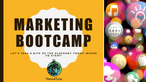 Marketing Bootcamp 1 - Business Listings and Your Message