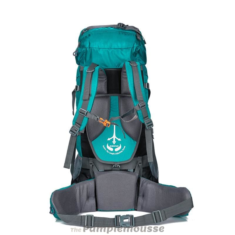High Capacity 80L Lightweight Camping Hiking Backpack Big Outdoor Nylon  Ultra Light Sport Travel Rucksack - a3ccd29821fc9