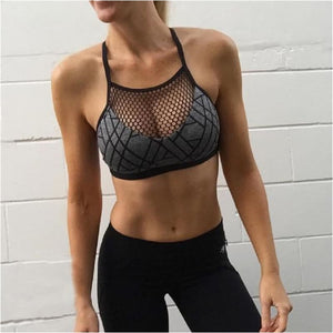 Womens Mesh Sports Bra Sexy Gym Sports Bra Breathable Quick Dry Fitness Top Yoga Bra Crop Top - Gray / S - Free Shipping - Sports - Clothing